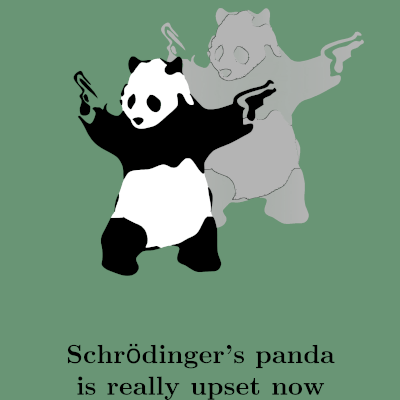 Schrödinger's panda is really upset now T-Shirt